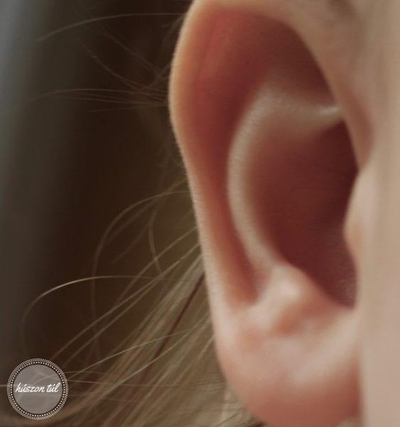 minekvan fülcimpa