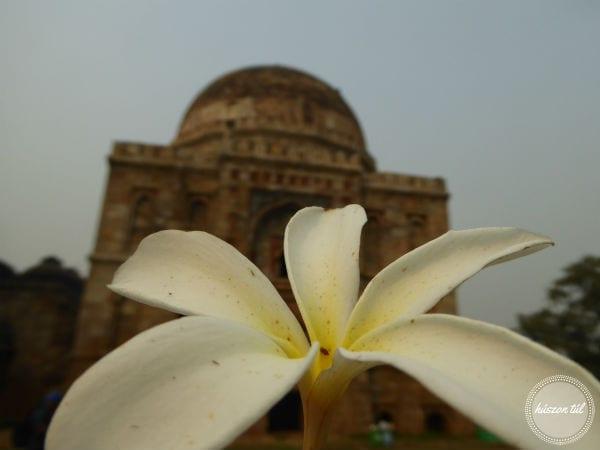 randompentek-halaadas-fehér virág egy indiai épület előtt